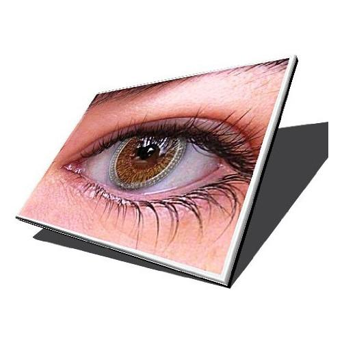 """10.0"""" LCD MSI WIND U130"""