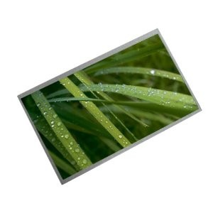 "10.1"" LCD LED  WSVGA, гланц, LTN101NT02"